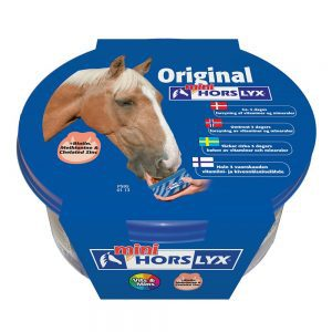 Horslyx slicksten mini
