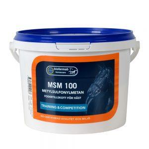 MSM 100 svavel