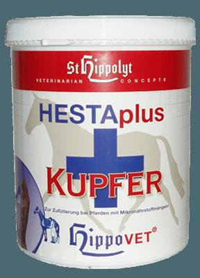 Hestaplus koppar
