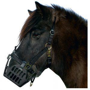 Övrigt till hästen
