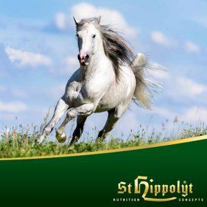 St Hipplolyt