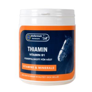 Thiamin B1
