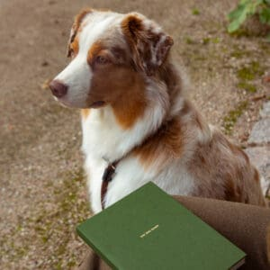 Dog diary Essential